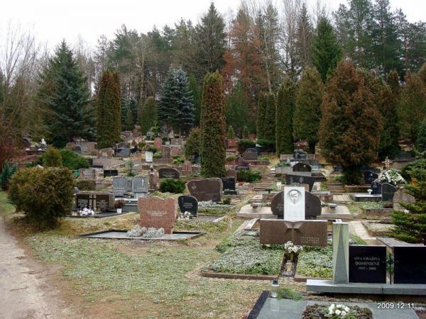 Rokantiškių kapinės Logotipas